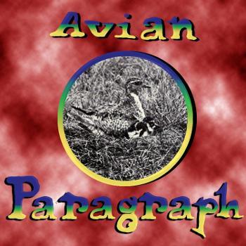 Avian Paragraph