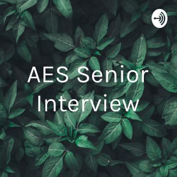 AES Senior Interview