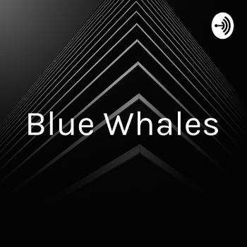 Blue Whales - No'omi