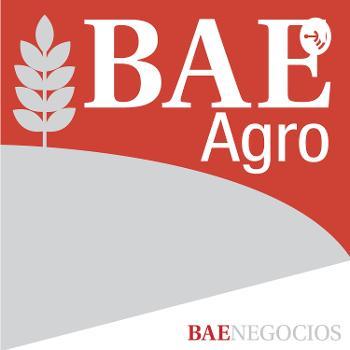 BAE Negocios AGRO