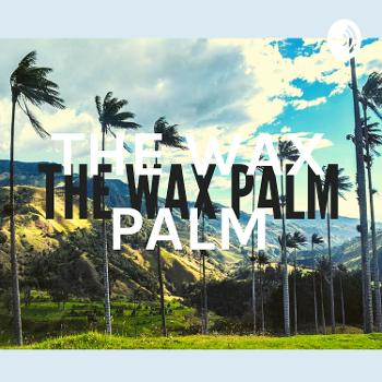 THE WAX PALM