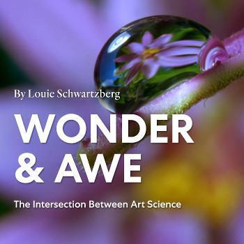 Wonder And Awe