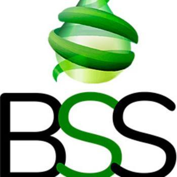 Bss/3S