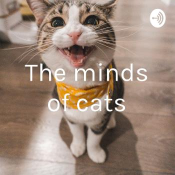 The minds of cats