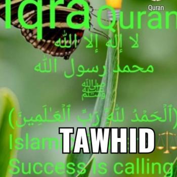 AkhdarQ