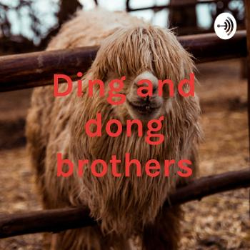 Ding and dong brothers