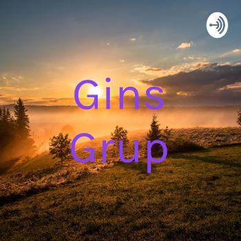 Gins Grup