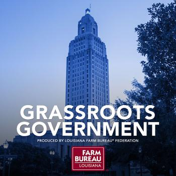 Grassroots Government