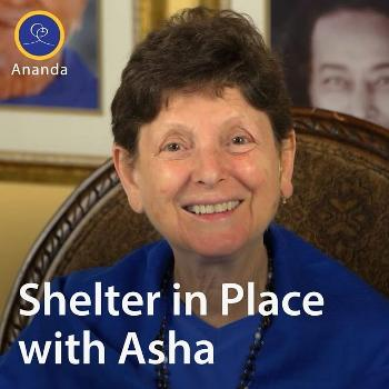 Shelter in Place with Asha