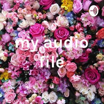 my audio file
